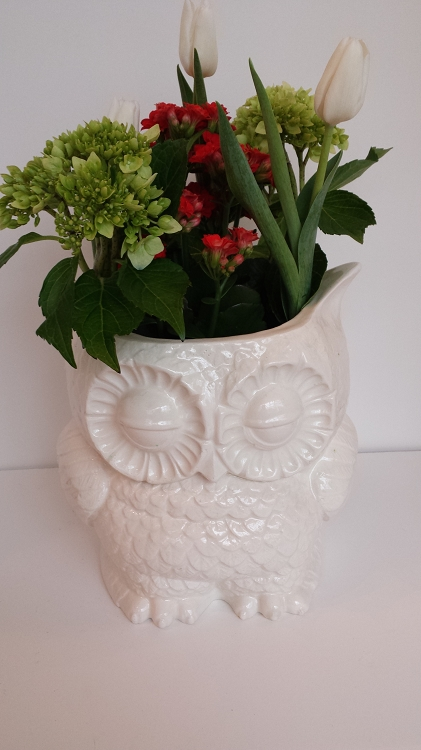 Owl Planter Canister