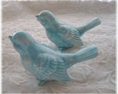 Love Birds Aqua Available in all Colors